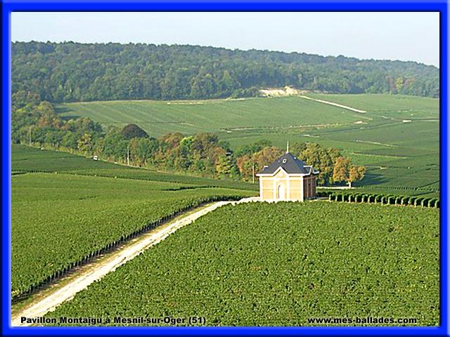 Le village de mesnil sur oger dans la marne 51190 for Salon blanc de blancs le mesnil sur oger