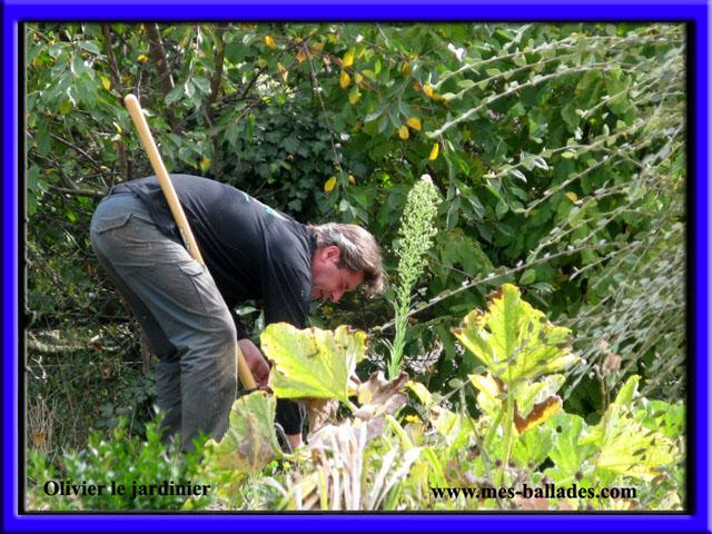 Le jardin secret d 39 olivier le jardinier a ormes 51170 for Jardinier paysagiste reims