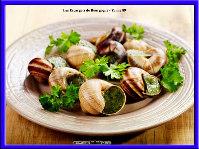 Les specialites culinaires dans l 39 yonne 89 - Cuisiner les escargots de bourgogne ...